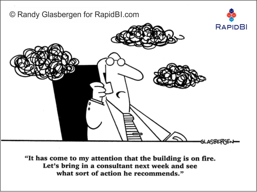 RapidBI Business Cartoon  #136