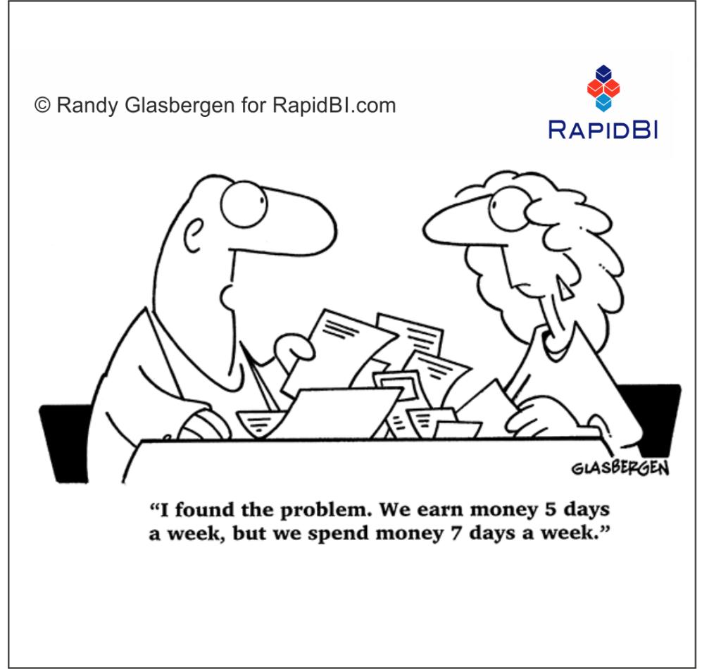 RapidBI Daily Business Cartoon #206
