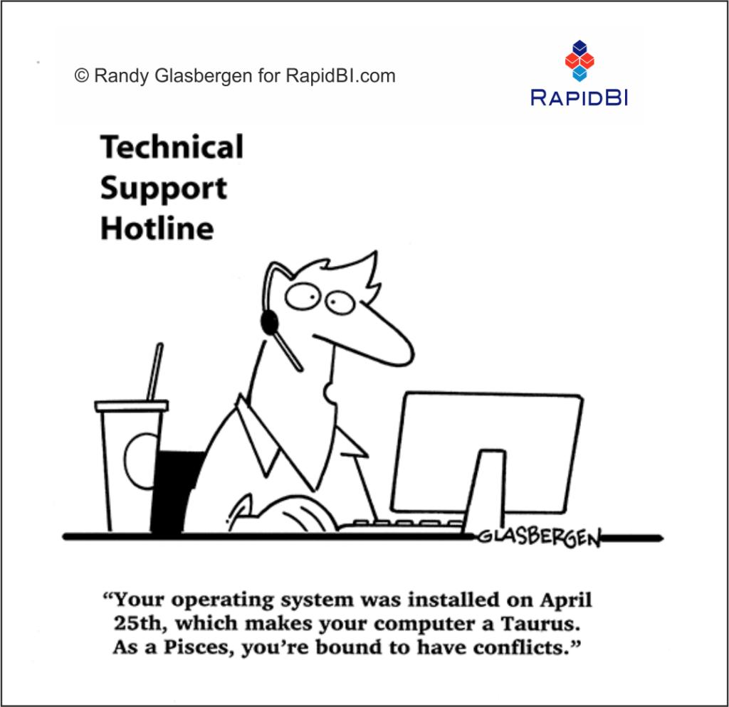 RapidBI Daily Business Cartoon #213
